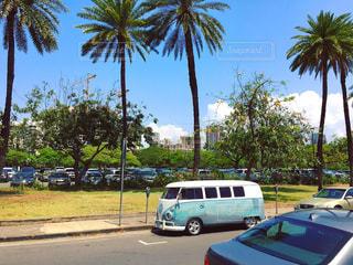 空,海外,晴れ,バス,ハワイ,アロハ
