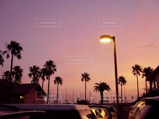 夕方のライトアップされた街の写真・画像素材[1868030]