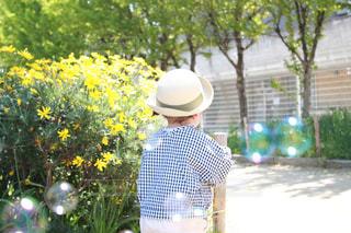 公園,花,キッズ,木,屋外,植物,後ろ姿,帽子,女の子,少女,シャボン玉,洋服,人物,背中,人,後姿,赤ちゃん,植木,幼児,ハット,2歳,1歳,外遊び