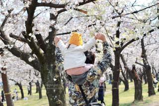 肩車をする親子の写真・画像素材[2180724]