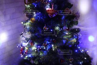 夜にライトアップされたクリスマスツリーの写真・画像素材[2853416]