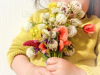 花を持つ子どもの手の写真・画像素材[4179002]