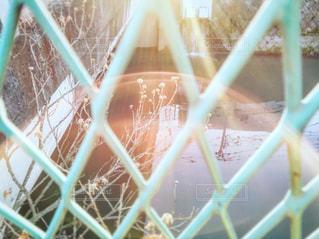 近くにケージのの写真・画像素材[1820340]