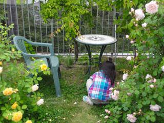 庭,後ろ姿,女の子,薔薇,人物,背中,人