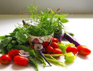 フルーツと野菜のサラダの写真・画像素材[2848595]