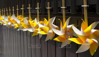 風景,夏,白,黄色,風車,お祭り,イエロー,色,黄,景観,川越