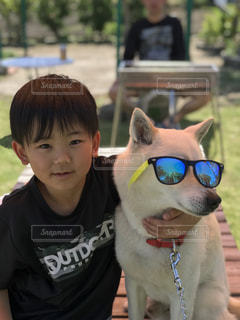 サングラス犬の写真・画像素材[1164039]