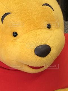 黄色,ぬいぐるみ,イエロー,ディズニー,黄,ぷーさん