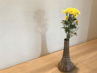花,花瓶,黄色,鮮やか,壁,flower,黄,yellow