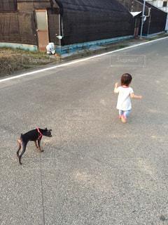子ども,犬,散歩,走る,道,ランニング,ほのぼの,ルンルン