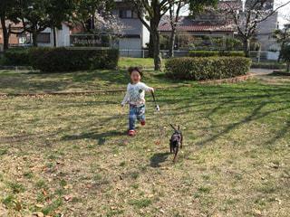 子ども,犬,公園,春,緑,散歩,走る,ランニング,運動,ほのぼの