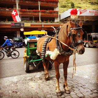 風景,乗り物,屋外,海外,ヨーロッパ,レトロ,レンガ,旅行,馬,馬車,スイス,地面,海外旅行,ツェルマット,Zermatt,描画