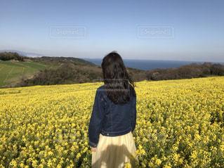 女性,海,春,黄色,菜の花,女の子,淡路島,兵庫県,20歳