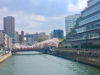 バック グラウンドで市と水の体の上の橋の写真・画像素材[1834019]