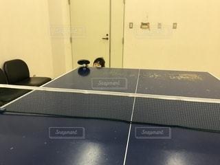 スポーツ,屋内,女の子,卓球,未来の卓球選手