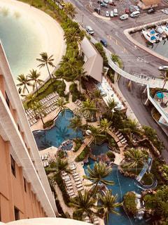 樹木,ホテル,休暇