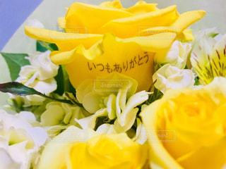 花,花束,黄色,プレゼント,イエロー,ありがとう,送別会,yellow,お別れ,お疲れ様,頂き物,送別,いつもありがとう
