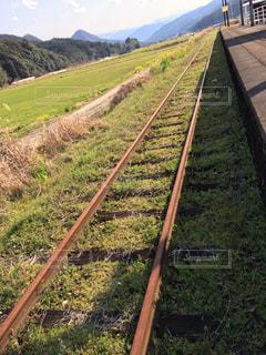 春,鉄道,一直線,ポッポ,ランニングコース