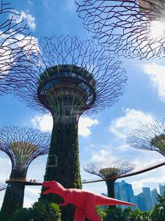 屋外,晴れ,青空,観光,旅行,シンガポール,海外旅行,恐竜,ガーデンズ・バイ・ザ・ベイ