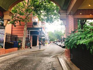屋外,街,樹木,オーストラリア,海外旅行,アデレード