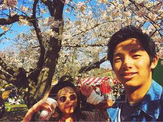 桜,カップル,花見,大濠公園,七分咲き