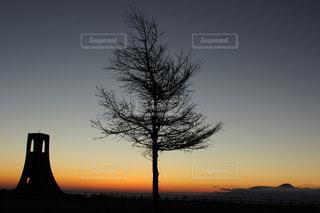 風景,空,冬,オレンジ,日の出,高原