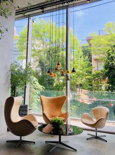 緑豊かなカフェの写真・画像素材[2722997]