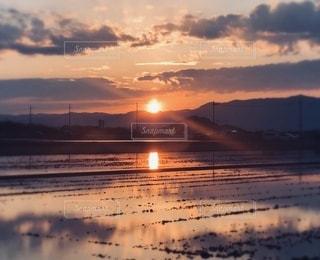 水面に映る夕陽の写真・画像素材[3439008]