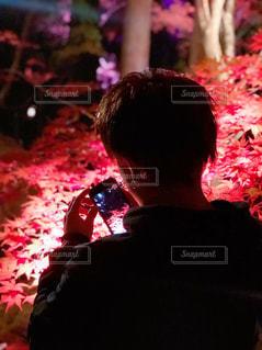 紅葉ライトアップの写真・画像素材[1839586]