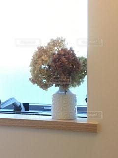 窓,ドライフラワー,光,紫陽花,午後,明るい,陶器,ひかり,優しい色,ミルクティー色