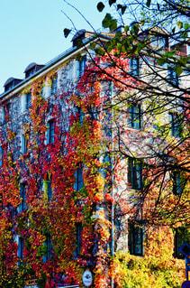 カラフルな南ドイツ•ミュンヘンの街角の写真・画像素材[1847619]