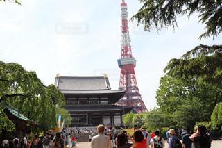東京タワーと増上寺の写真・画像素材[2095912]