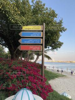 海,カラフル,標識,旅行,可愛い,リゾート,海外旅行,ドバイ,おしゃれ,アラブ文字