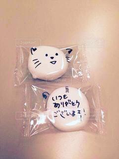 猫,文字,癒し,メッセージ,ありがとう,マシュマロ,手書き,感謝,日本語,手書き文字