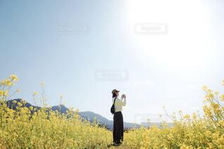 自然,風景,空,花,カメラ,カメラ女子,屋外,青空,菜の花,カメラマン