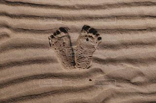 砂浜の写真・画像素材[2273356]