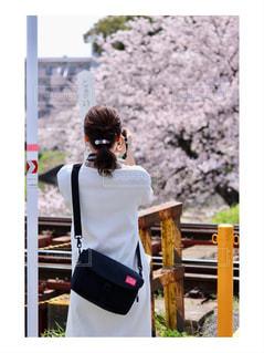 景色,鮮やか,後ろ姿、女性、春、人、人物、後姿、背中,桜、カメラ、女性,景色、花