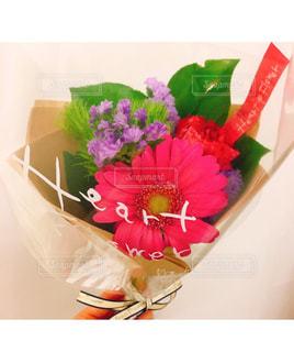 自然,花,ピンク,花束,きれい,可愛い,おしゃれ,ファンシー,可愛らしい