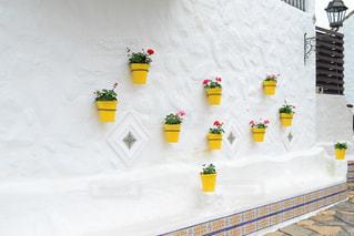 建物,花,街並み,白,かわいい,黄色,植木鉢,花壇,イエロー,白壁