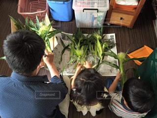 子ども,食べ物,夏,屋内,親子,後ろ姿,野菜,洋服,人物,背中,人,少年,父子,トウモロコシ,きょうだい,お父さん,お手伝い,とうもろこし,皮むき