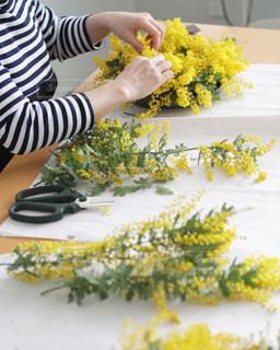 自然,屋内,植物,鮮やか,ナチュラル,カラー,yellow,多彩,春の始まり