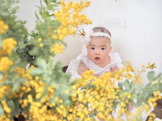 黄色,ミモザ,baby,ハーフバースデー,yellow,あかちゃん,half birthday