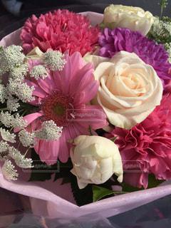 春らしい花束の写真・画像素材[1976385]