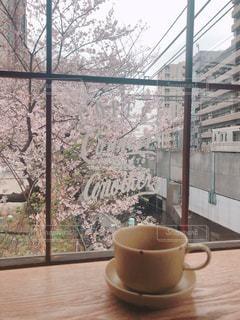 大きな窓から眺める桜と電車の写真・画像素材[1875860]