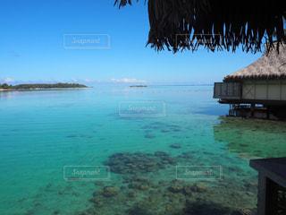 自然,風景,海,魚,屋外,南国,きれい,晴れ,青空,晴天,青,水,透明,観光地,水面,水色,景色,観光,旅行,リゾート,海外旅行,海面,水上コテージ,タヒチ,透き通る