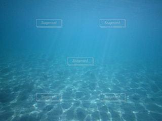 海中の世界の写真・画像素材[1875320]