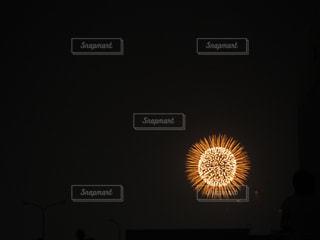 花火の輝きの写真・画像素材[1876445]