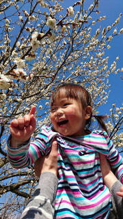 初めての桜に喜ぶ女の子の写真・画像素材[1850345]