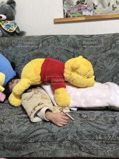 子ども,仲良し,ぬいぐるみ,おやすみ,熱,プーさん,いたずら,スヤスヤ