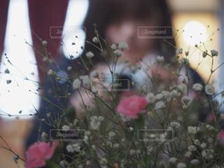 近くの花のアップの写真・画像素材[1854053]